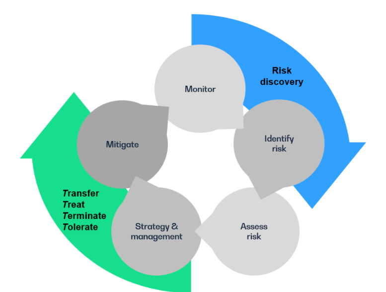 Flow chart depicting the combination of the ERM process and the 4 T's of risk management.